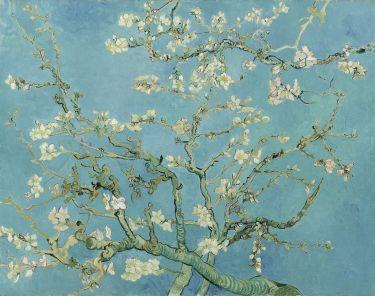 vincent_van_gogh_-_almond_blossom