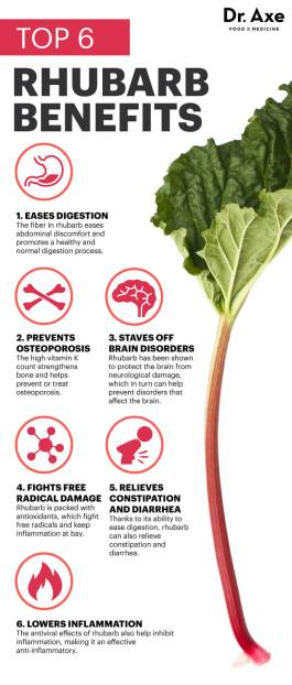 rhubarb benefits
